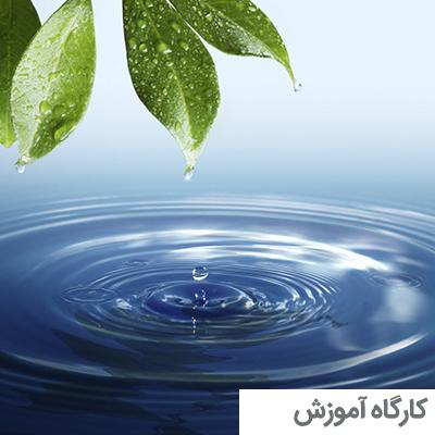 کارگاه یوگای بارداری در آب