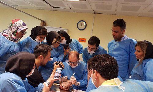 نهمین کارگاه آموزش جراحی افزایش طول تاج (1)
